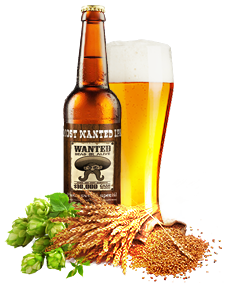 Most wanted ipa